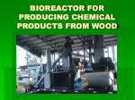 bioreactor for producing chemical products from wood