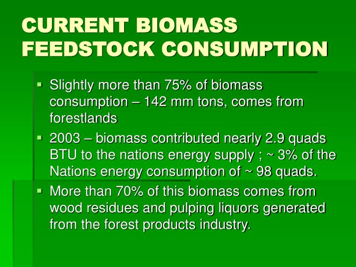 CURRENT BIOMASS FEEDSTOCK CONSUMPTION