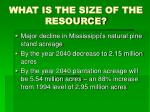 what is the size of the resource