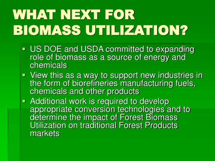 WHAT NEXT FOR BIOMASS UTILIZATION?