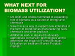 what next for biomass utilization