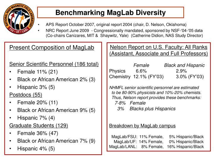 Benchmarking MagLab Diversity