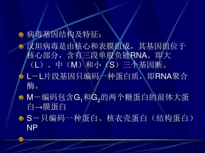 病毒基因结构及特征: