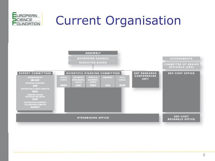 Current Organisation