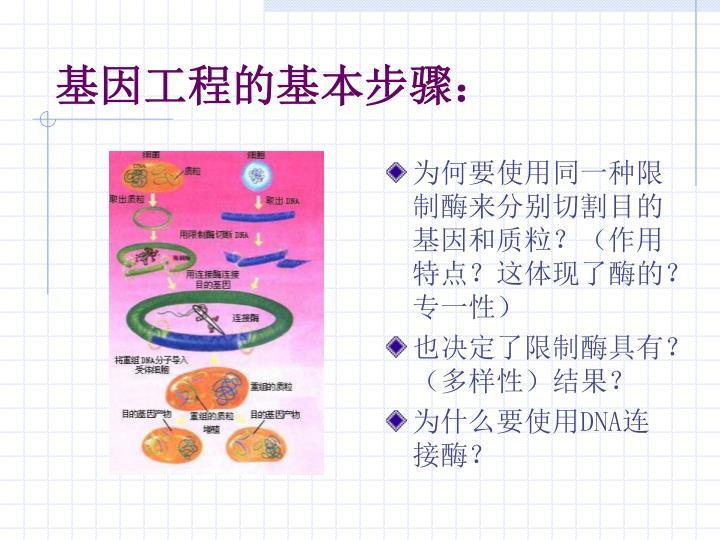 为何要使用同一种限制酶来分别切割目的基因和质粒?(作用特点?