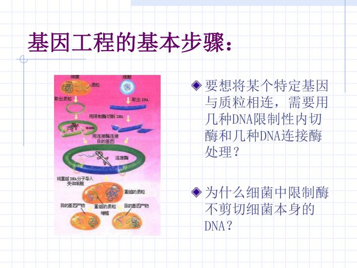 要想将某个特定基因与质粒相连,需要用几种