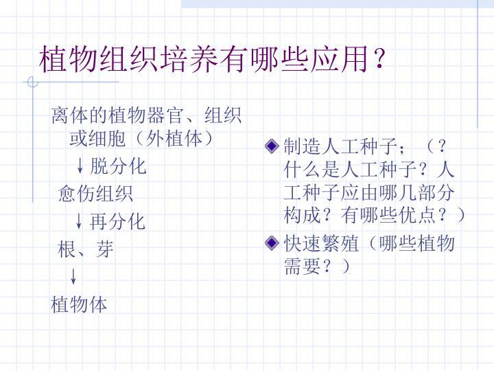 离体的植物器官、组织或细胞(外植体)