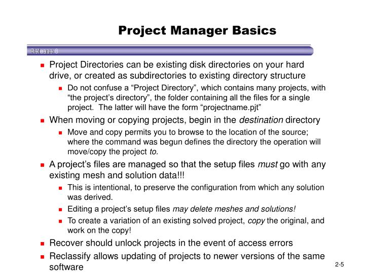 Project Manager Basics
