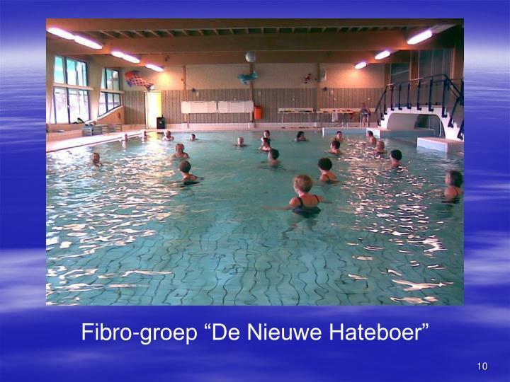 """Fibro-groep """"De Nieuwe Hateboer"""""""
