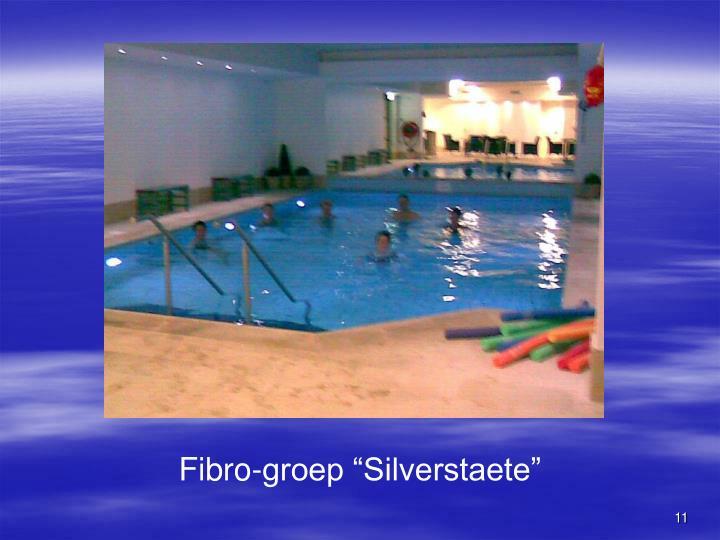 "Fibro-groep ""Silverstaete"""