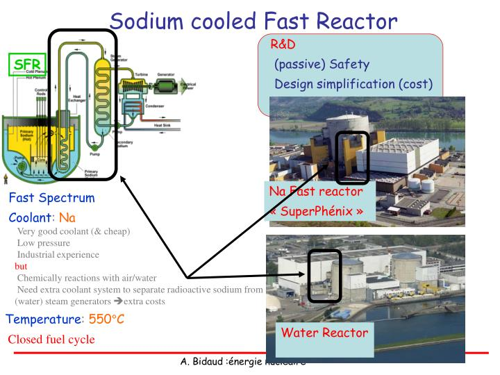 Sodium cooled Fast Reactor