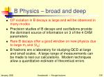 b physics broad and deep