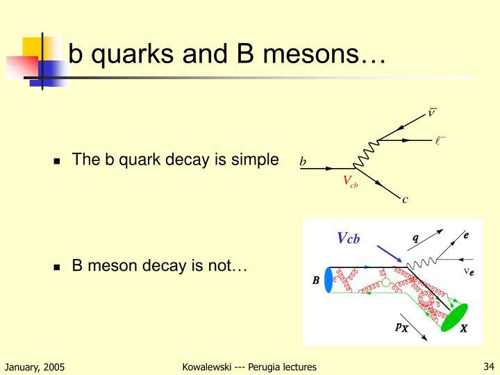 b quarks and B mesons…