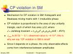 cp violation in sm