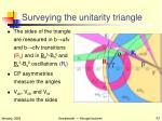 surveying the unitarity triangle