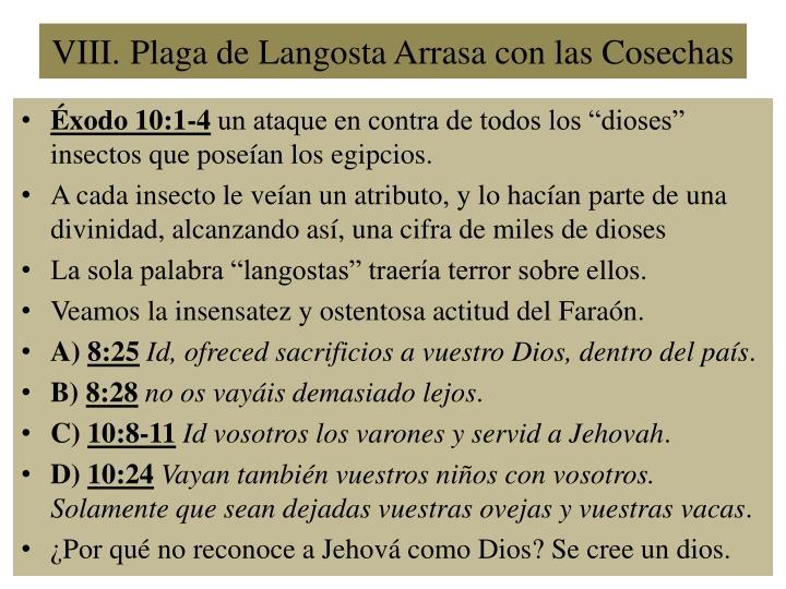 VIII.Plaga de Langosta Arrasa con las Cosechas