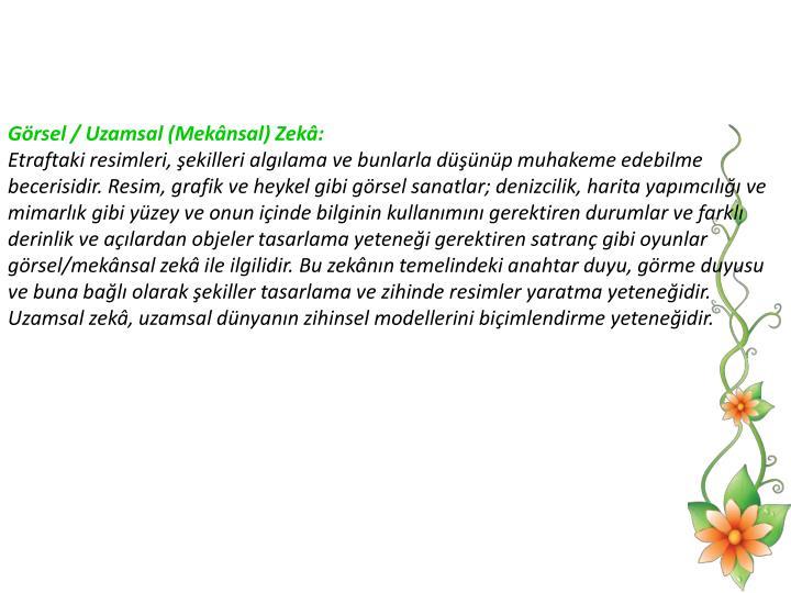 Grsel / Uzamsal (Meknsal) Zek: