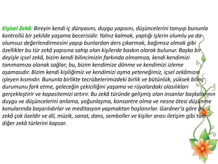 Kiisel Zek: