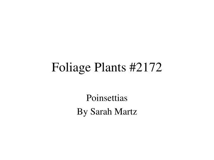 Foliage Plants #2172