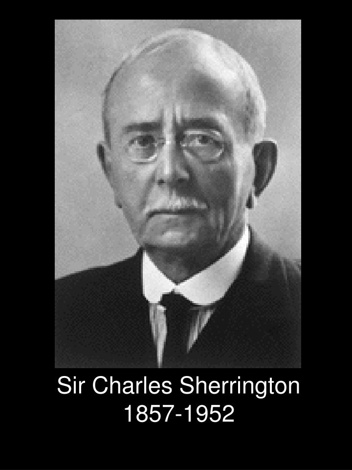 Sir Charles Sherrington