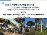 forest management planning
