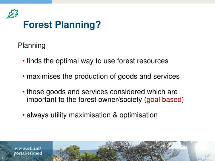 Forest Planning?