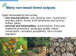 many non wood forest outputs