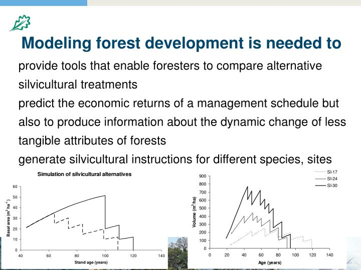 Modeling forest development is needed to