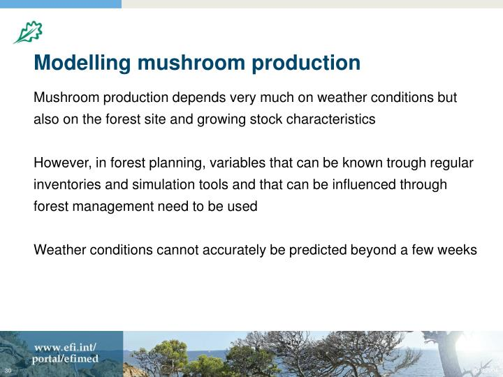 Modelling mushroom production