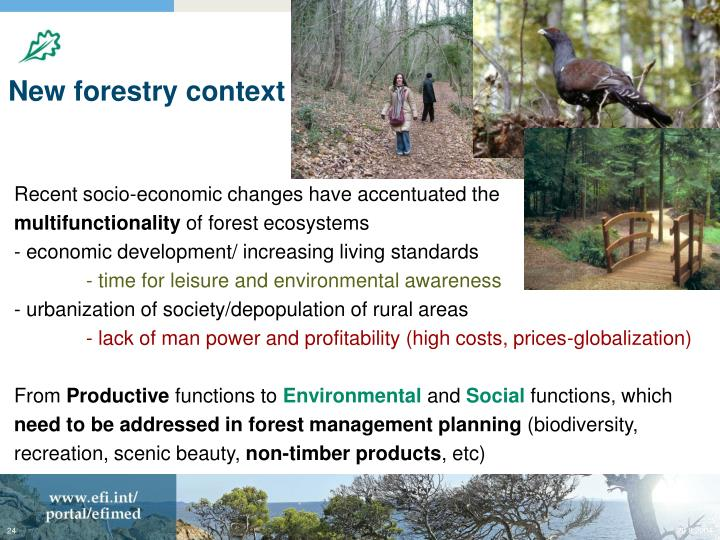 New forestry context
