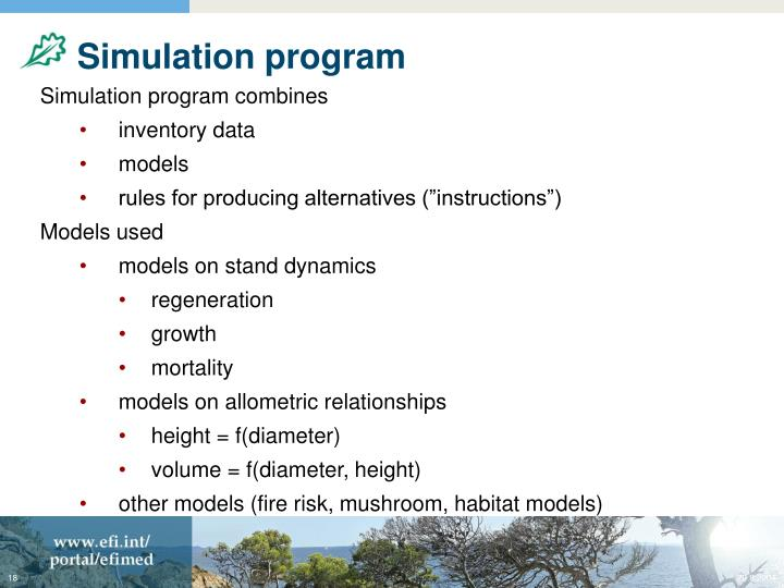 Simulation program
