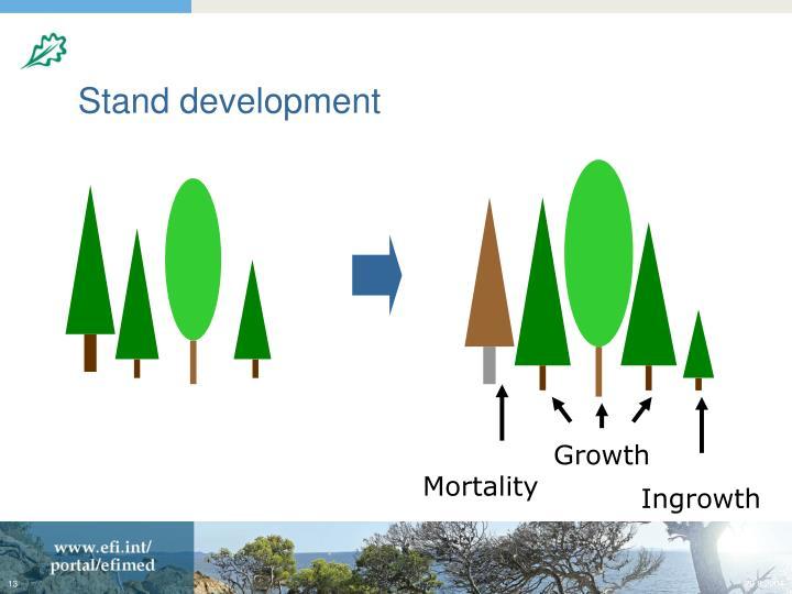 Stand development