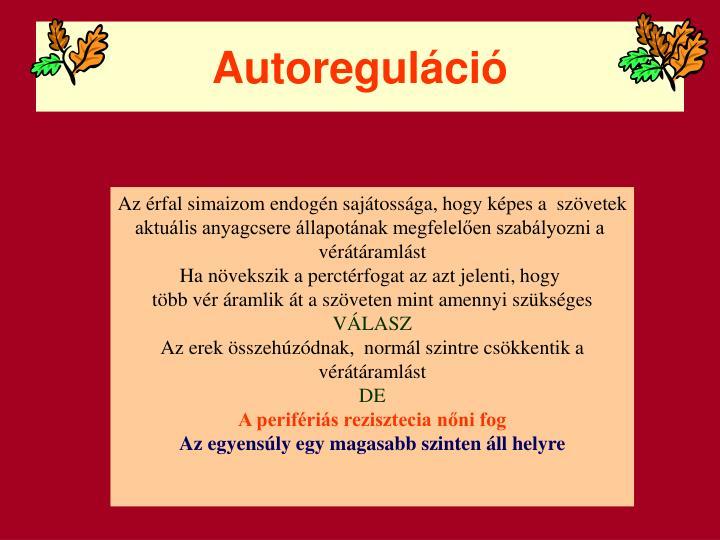Autoreguláció