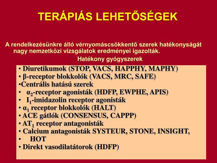 TERPIS LEHETSGEK