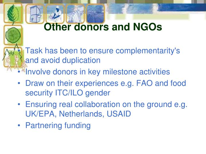 Other donors and NGOs