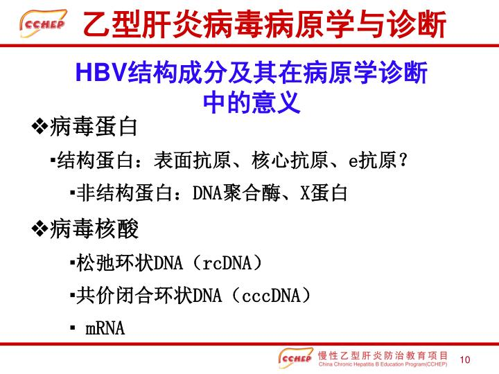 乙型肝炎病毒病原学与诊断