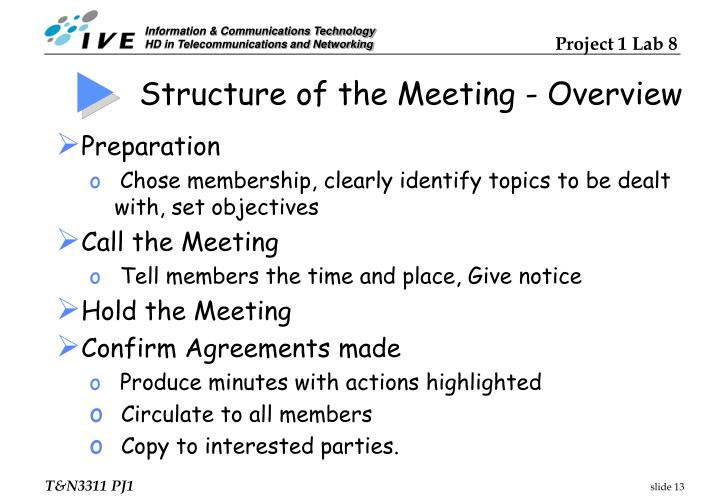 Structure of the Meeting - Overview