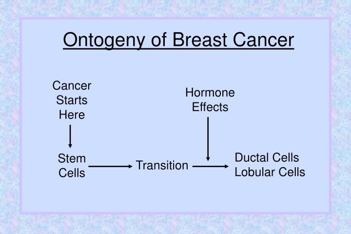 Ontogeny of Breast Cancer
