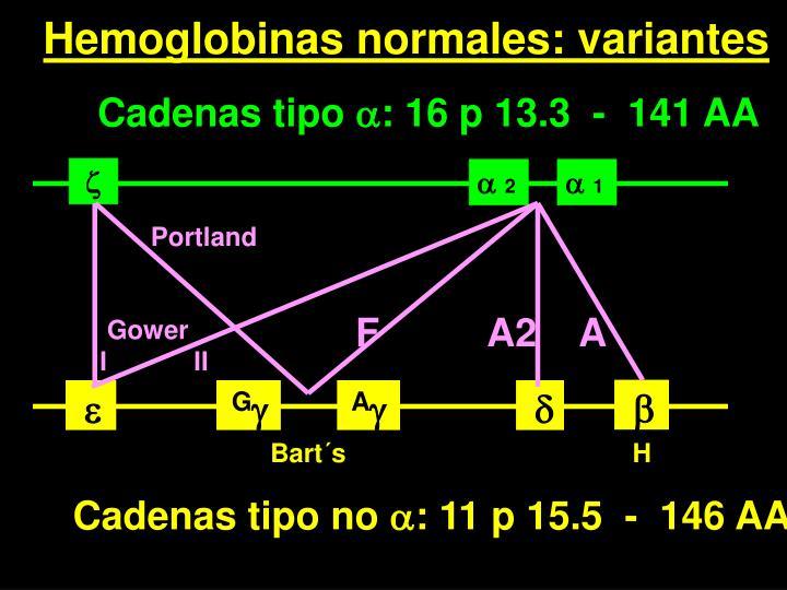 Hemoglobinas normales: variantes