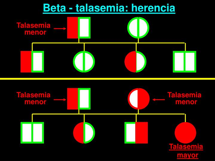 Beta - talasemia: herencia