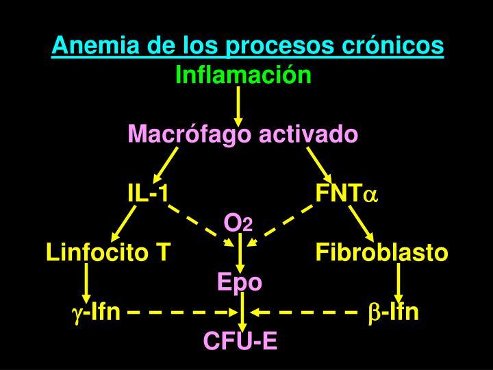 Anemia de los procesos crónicos