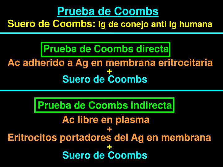 Prueba de Coombs