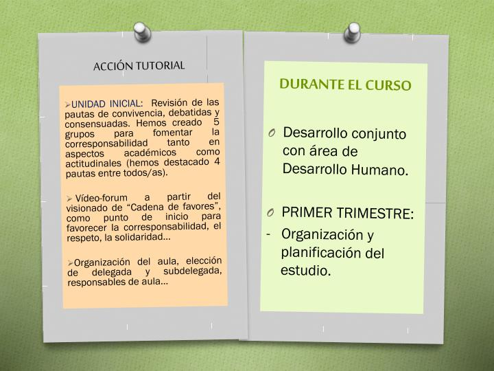 DURANTE EL CURSO