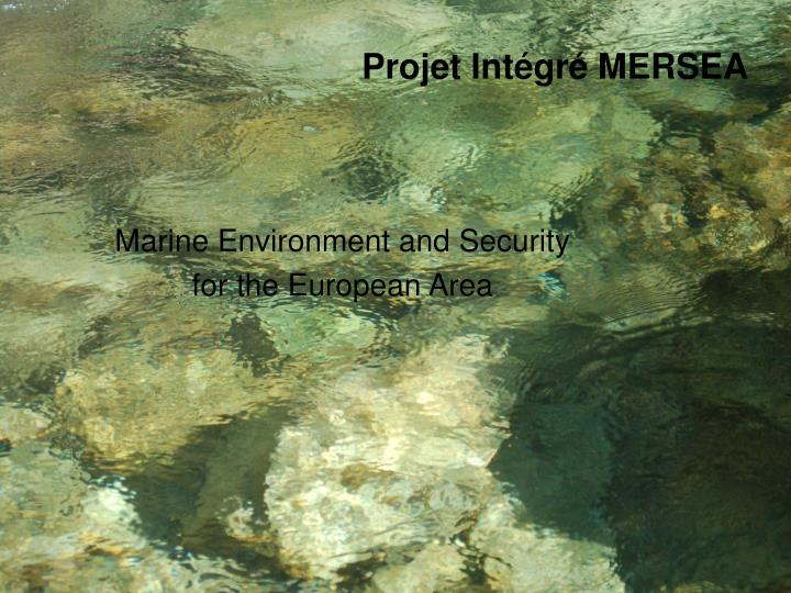 Marine environment and security for the european area