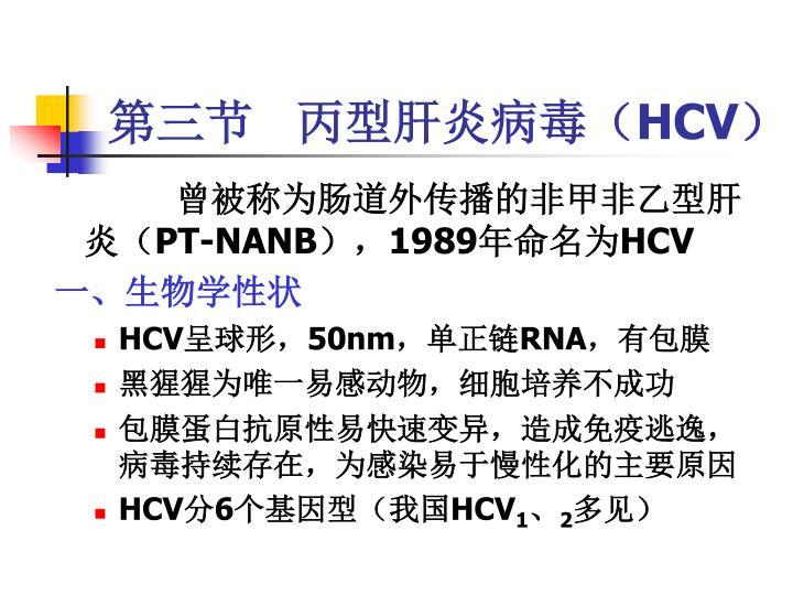 第三节   丙型肝炎病毒(