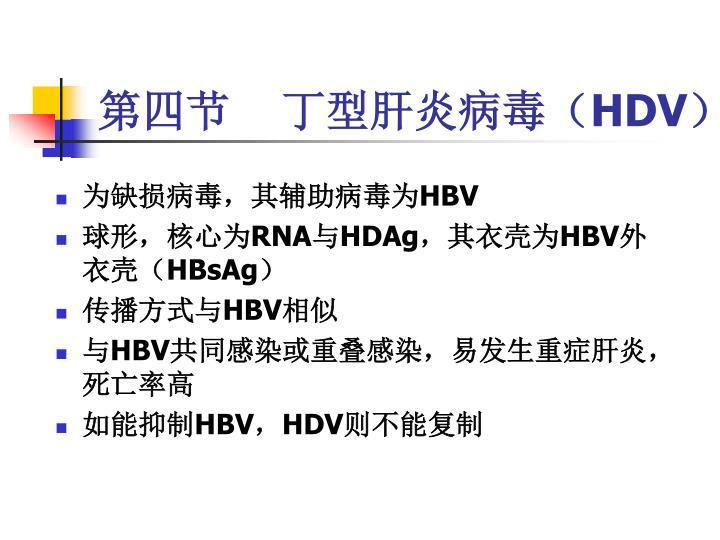 第四节    丁型肝炎病毒(