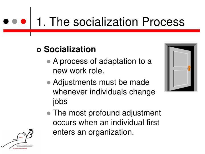 1. The socialization Process