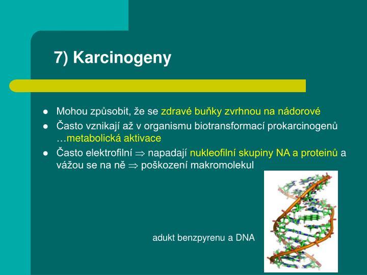 7) Karcinogeny