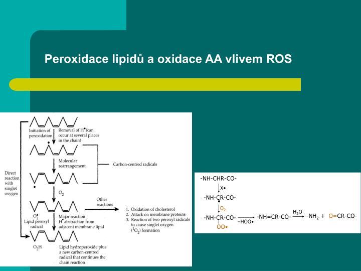 Peroxidace lipidů a oxidace AA vlivem ROS