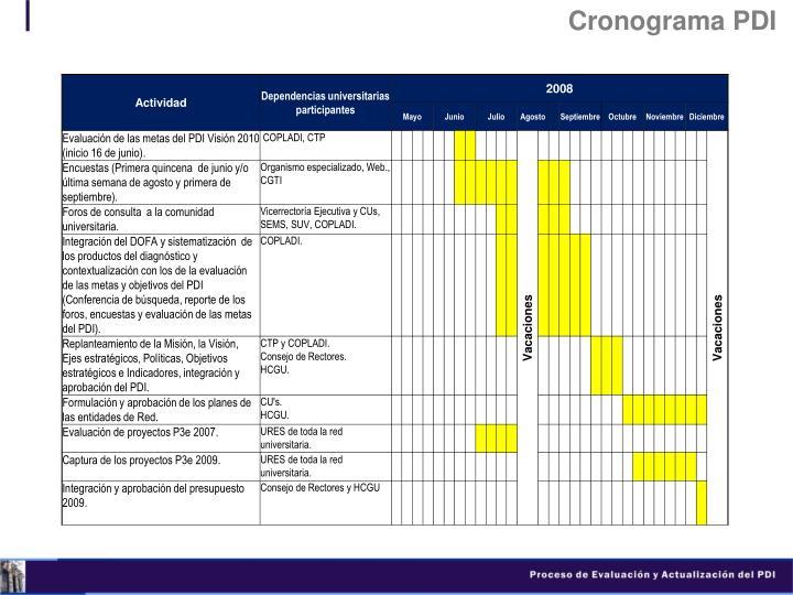 Cronograma PDI